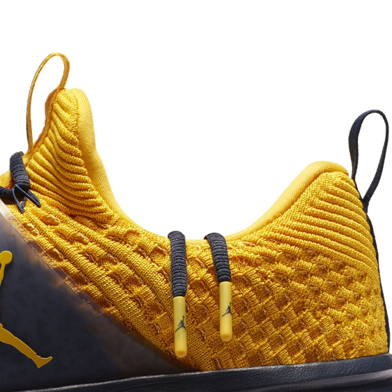 jordan-trainer-2-flyknit-michigan-1