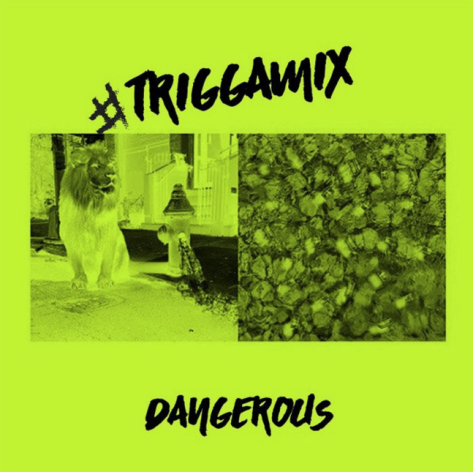 trigga.png